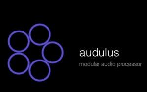 Thumb audulus